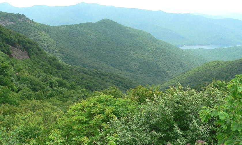 Allegany Mts